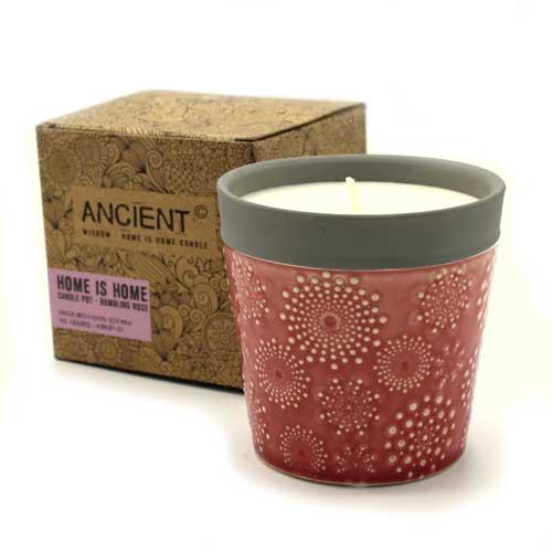 candle pot rambling rose 1